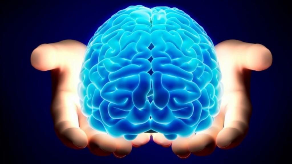 De ce are nevoie creierul nostru în fiecare zi?